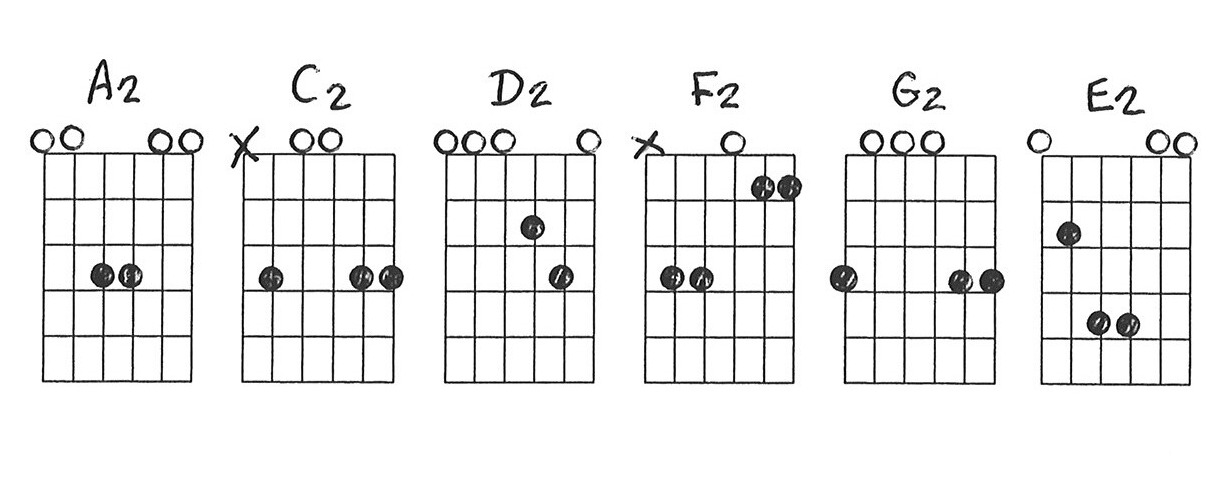 C2 Chord Diagram 19fearless Wonderde